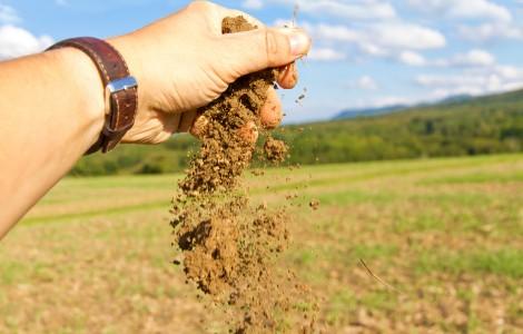 Ist die Ernte im Mühlenkreis bedroht?